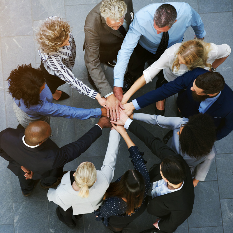 diversity and team building